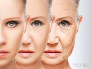 肌の老化を止める方法。